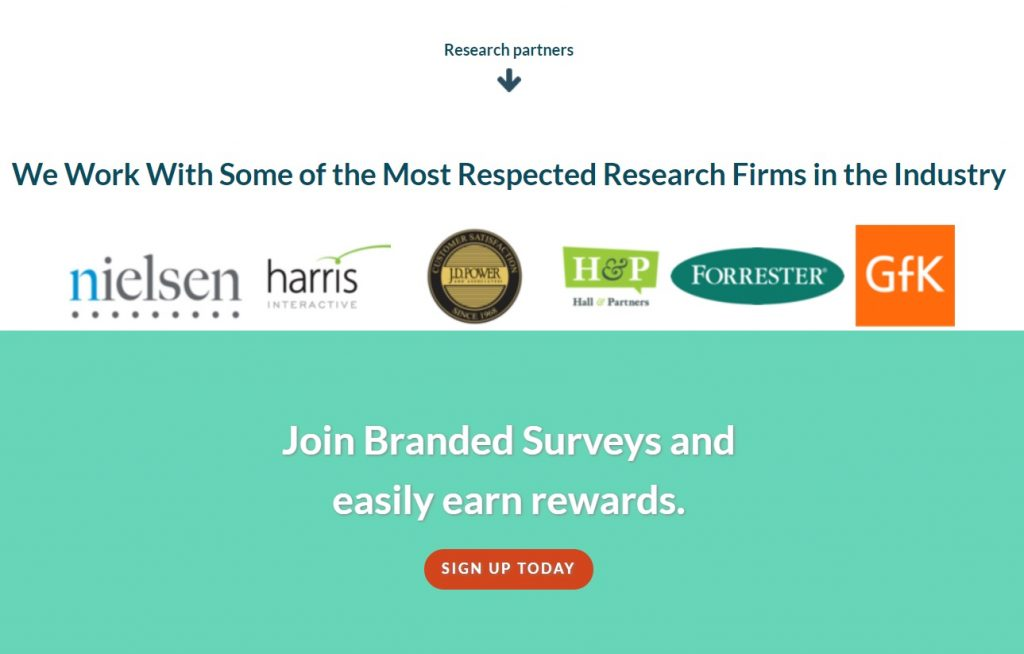 Branded Surveys Pros and Cons