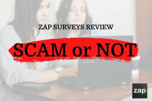 Zap Surveys Review