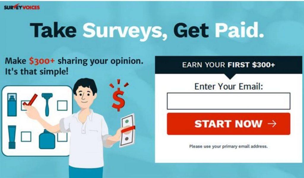 Survey Voice Review