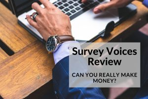Survey Voice Review